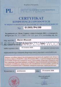 Certyfikat kompetencji zawodowych międzynarodowy